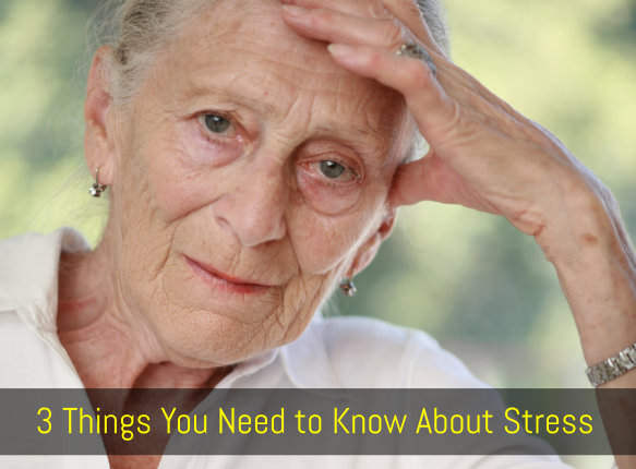 3 Things You Need to Know About Stress