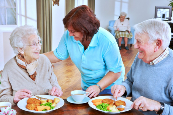 Food Choices and Proper Nutrition for Healthy Aging